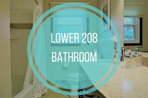 Lower 208 Bathroom